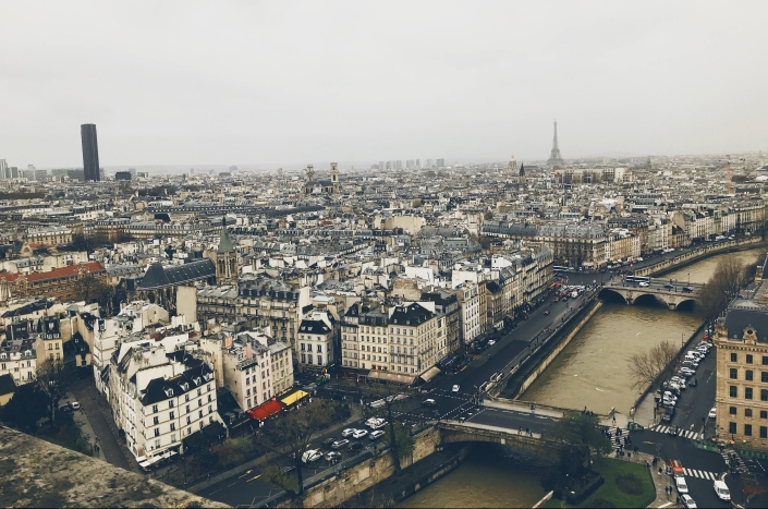 Rooftops of Paris seen from the top of Notre Dame
